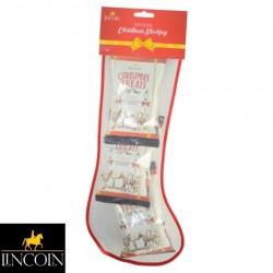 Lincoln Christmas Stocking