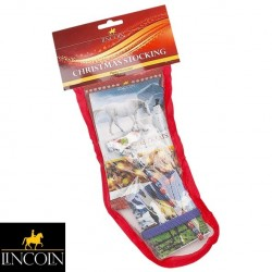Lincoln Pony Mad Stocking