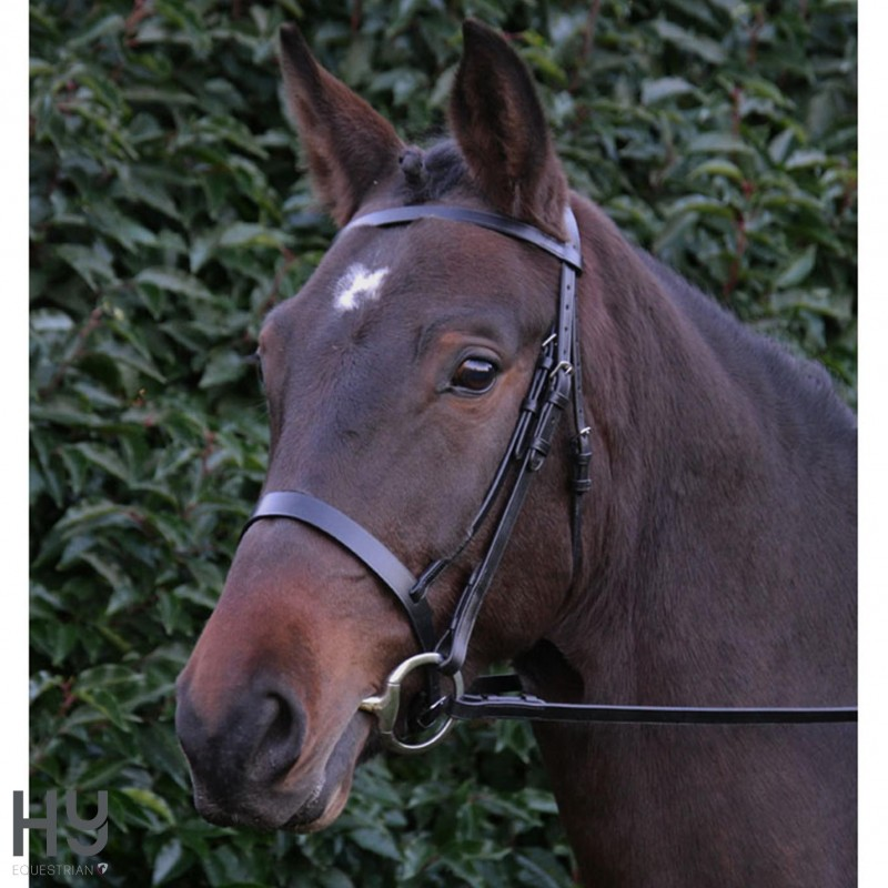 Hy Hunter Bridle with Rubber Grip Rein