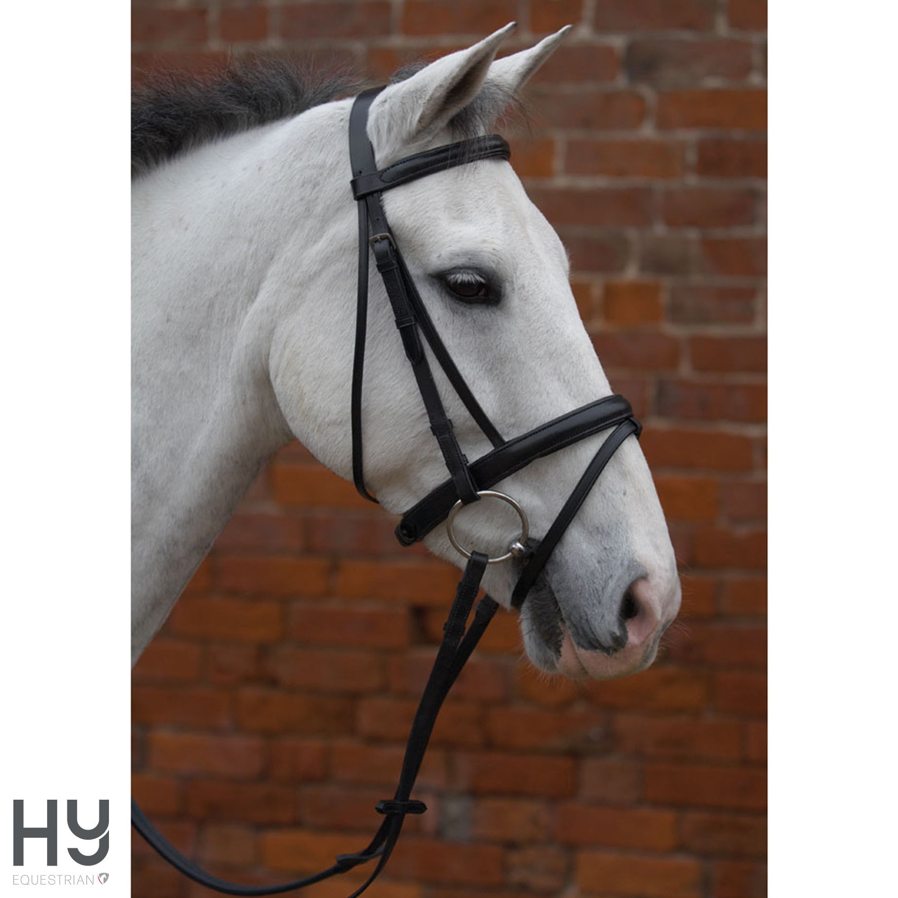 Hy Padded Flash Bridle with...