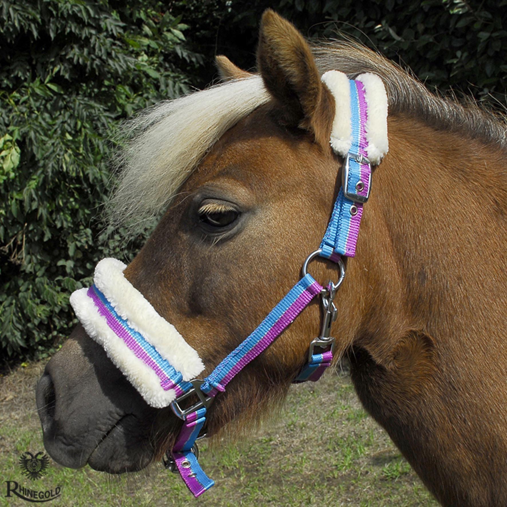 Bright Striped Fur Trim Small Pony Headcollar by Rhinegold