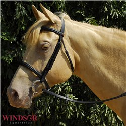 Windsor Equestrian Bridle with Plain Cavesson Noseband
