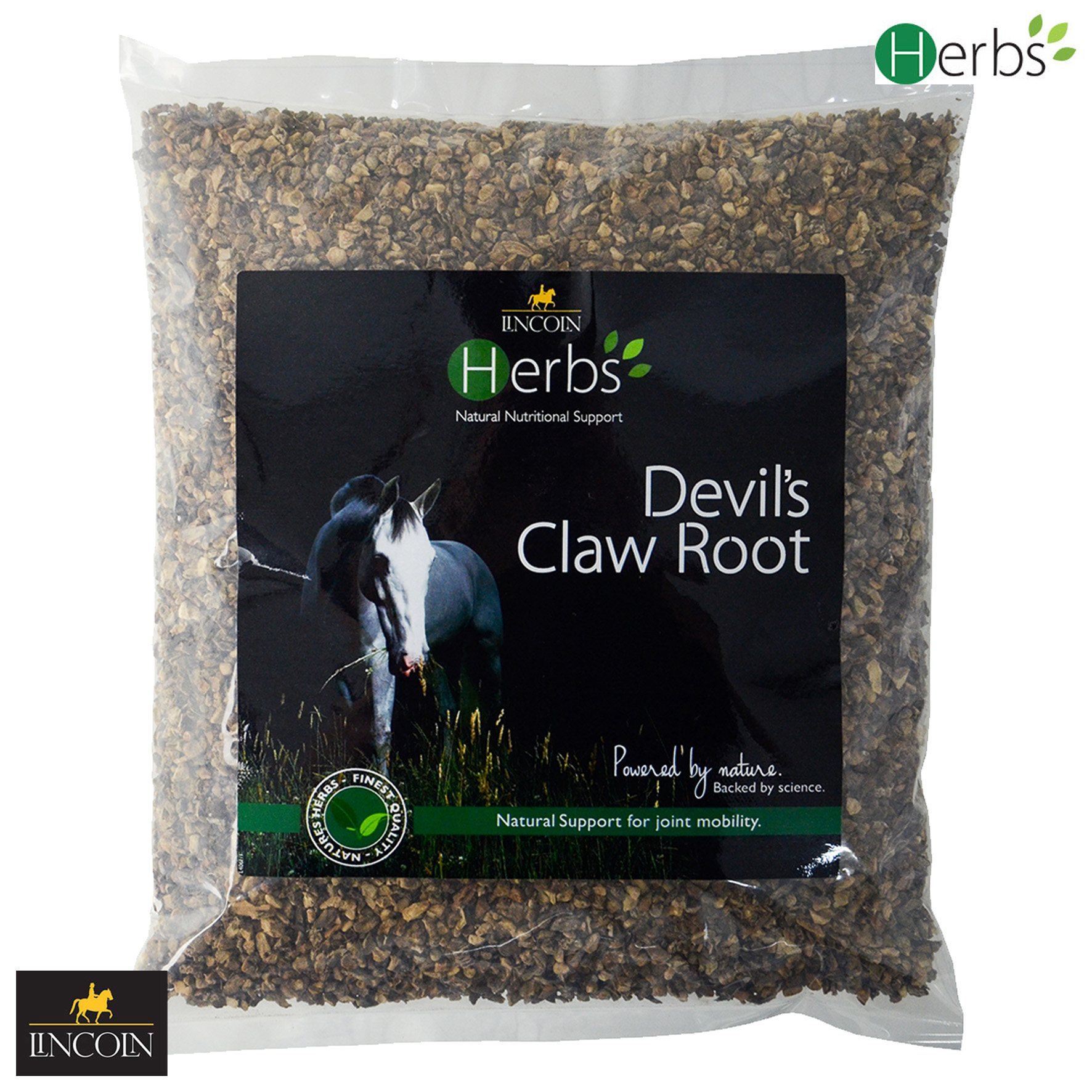 Lincoln Herbs Devil's Claw Root