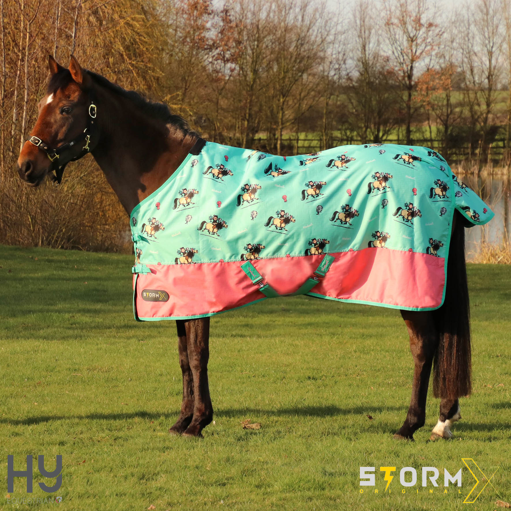 Thelwell Collection Trophy No Fill Turnout Rug