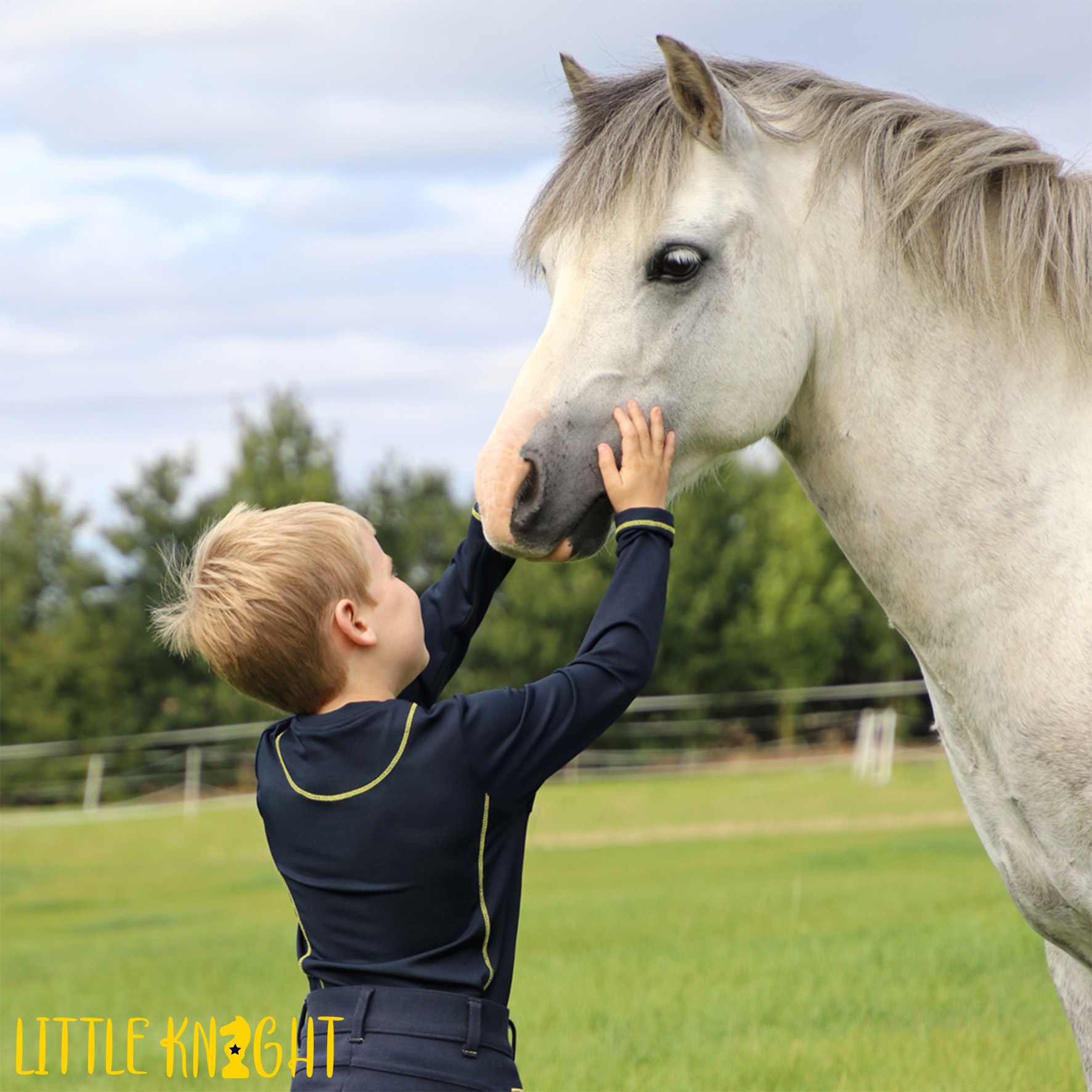 Lancelot Long Sleeved Top by Little Knight